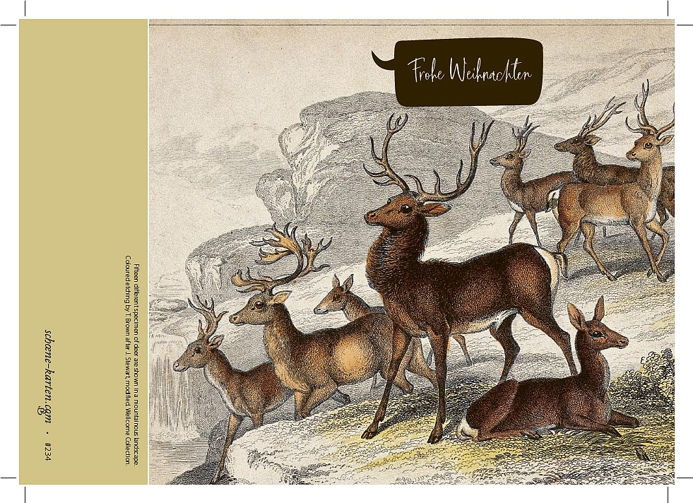 Weihnachtskarte Vintage Hirsche