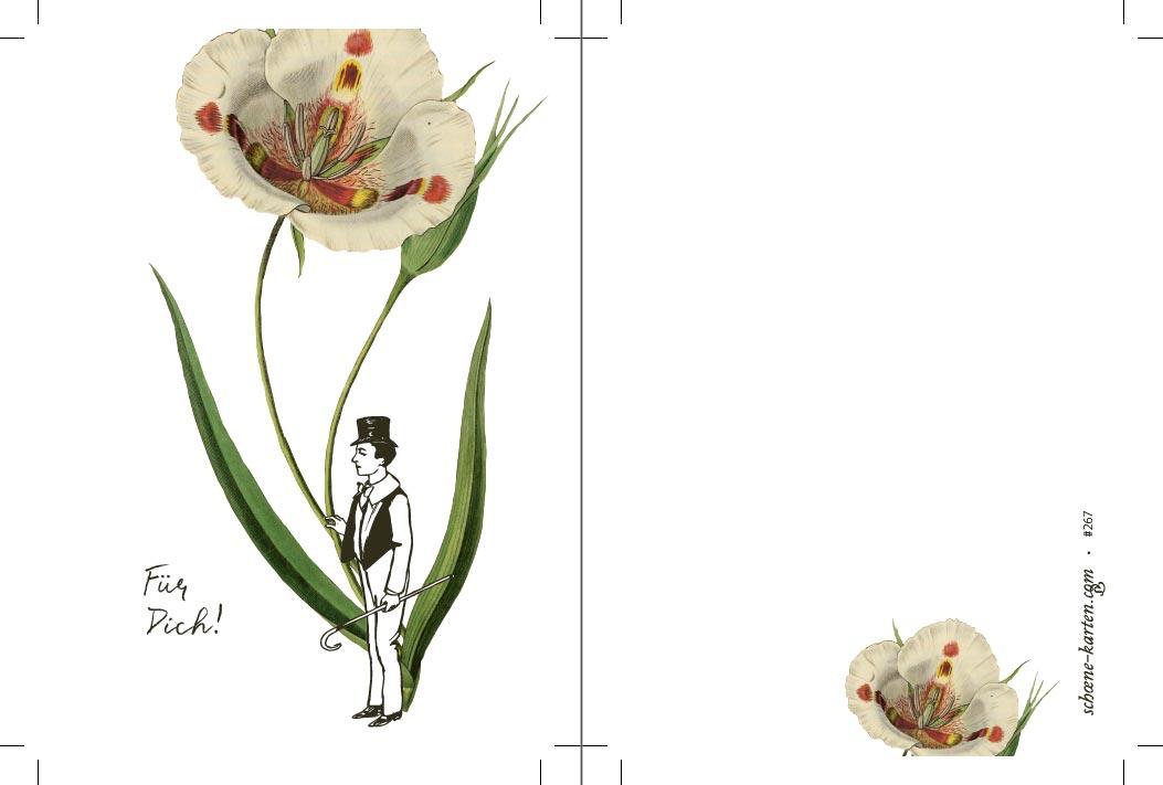 Postkarte Blume Für Dich · Tulpe